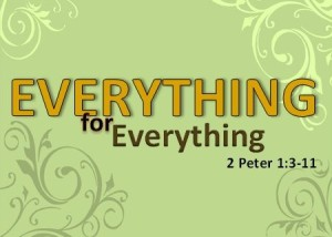 Everything for everything image -final